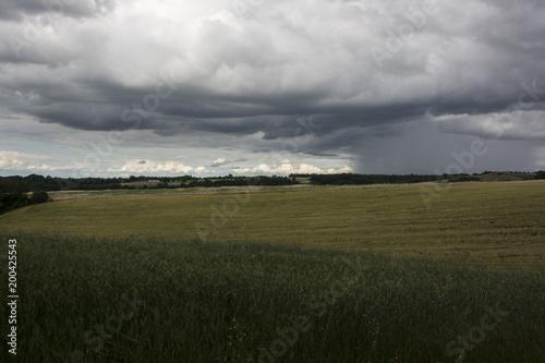 Burza z piorunami na trawniku