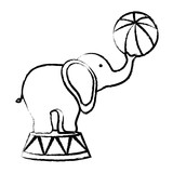 sketch of circus elephant with a ball over white background, vector illustration