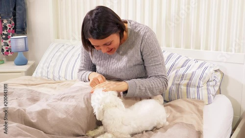 Beautiful woman in love with puppy dog playing in bed smiling slow motion medium shot