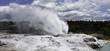 Te puia new zealand day trip north island geothermal geyser