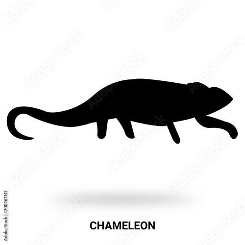 Fototapeta chameleon silhouette isolated on white background