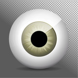 Eye, gray. Realistic 3d grayeyeball vector illustration. Real human iris,pupil and eye sphere. Icon on transparent background. Isolated macro color eyeball. Character eyes design. Anatomy close up.
