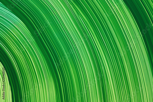 Colorful abstract painting background
