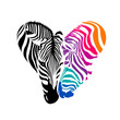 Zebra head, Black and colorful  in heart shape. Icon design, Wild animal texture. Illustration isolated on white background.