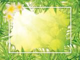Summer tropical vector design - 200481965