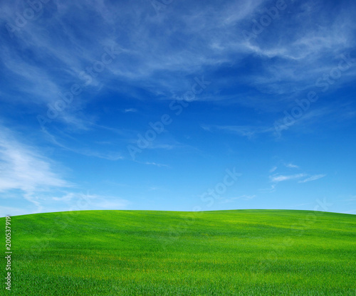 field and sky - 200537919