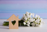 Wooden house with hole in form of heart with spring snowdrop flowers on blue background