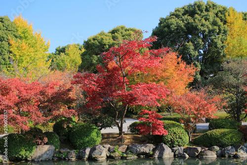Sticker Garden of  kyoto To-ji Temple