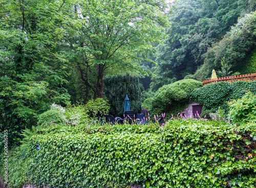 In de dag Olijf European terraced garden