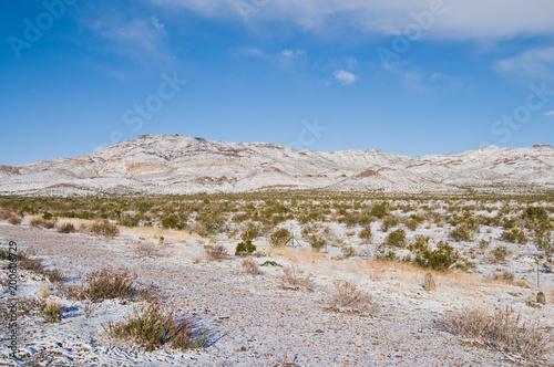 Foto Murales Snowy field