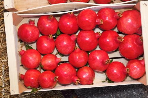 melagrana frutti rossi