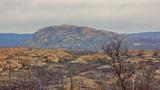 Bare rocky terrain desert forest fires