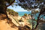 Typical Costa Brava landscape - 200665126