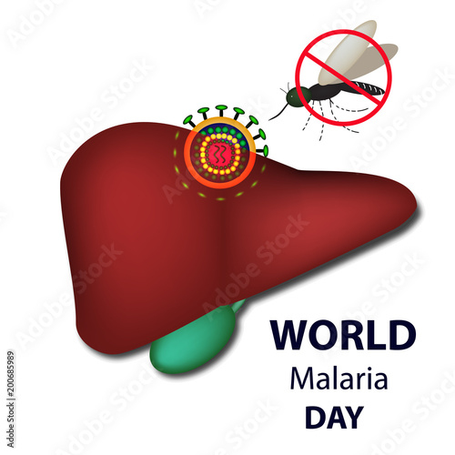 World Malaria Day. Mosquito bans the sign. Liver, malaria virus. Infographics. Vector illustration on isolated background. - 200685989