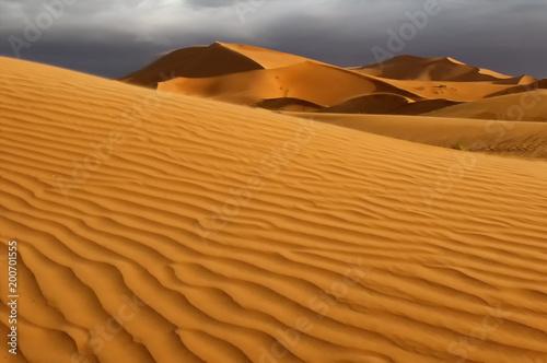 Sahara dunes at sunrise;  near Merzouga, Morocco - 200701555