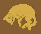 a resting yellow cat on a brown background