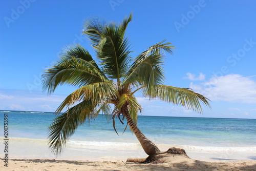 Aluminium Tropical strand Voyage, nature, république dominicaine