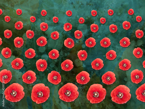 Patterned Poppies Collage on Textured Background - 200760790