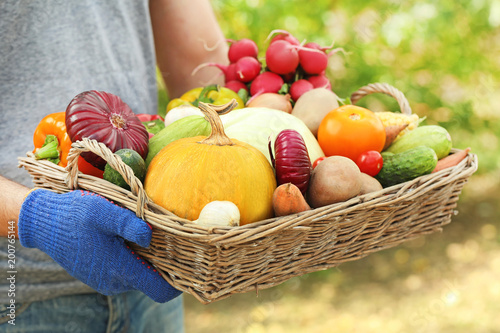 Male hands holding basket with fresh vegetables