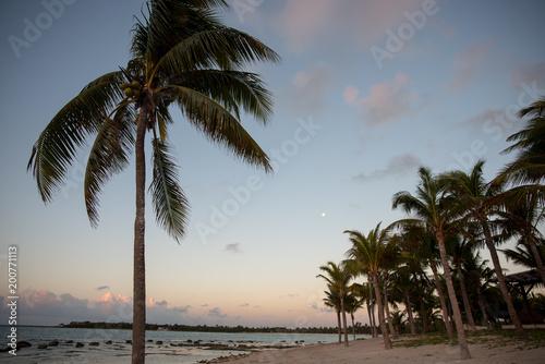 Foto Murales Sunrise on beach in Cancun