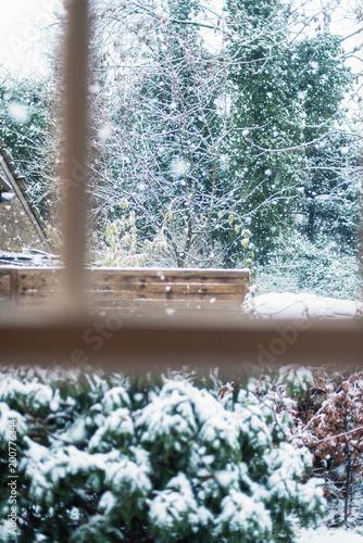 Śnieżne podwórko z drzewami i żywopłotem bukowym widoczne w oknie wewnętrznym.