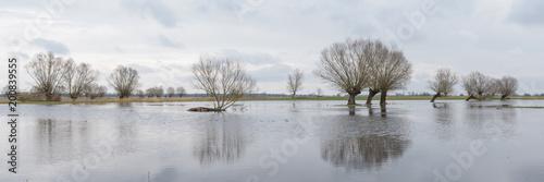 Hochwasser an der Havel in Brandenburg - 200839555