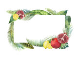 Watercolor vector banner tropical leaves and fruits isolated on white background. - 200841535