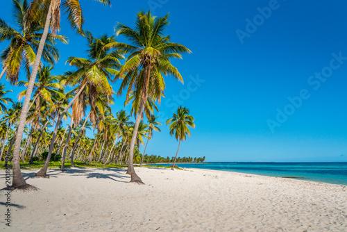 Aluminium Tropical strand Karibischer Strand