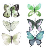 set of colorful watercolor illustrations of butterflies