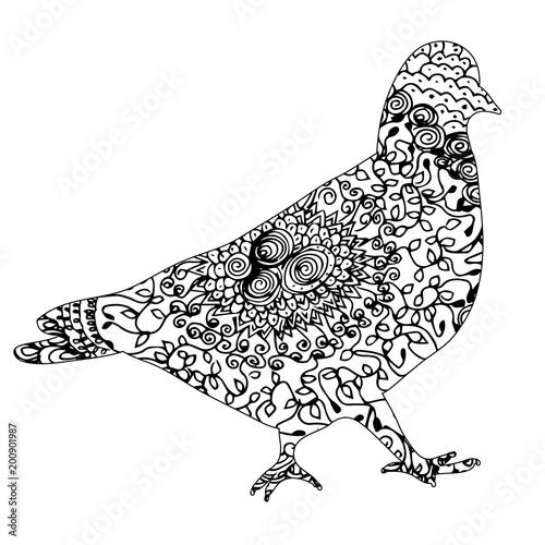 zentangle gołąb ptaka