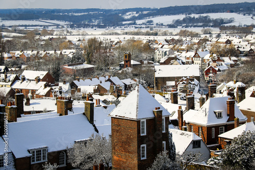 Rye in the snow