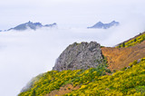 Foggy view in mountains, Madeira, Portugal