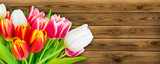 Tulips and wooden background