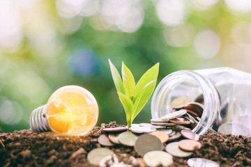 Glowing light bulb with small plant growing from soil and money coins in the glass jar