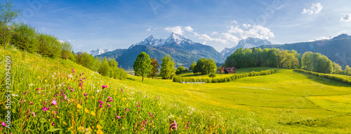 Idyllic landscape with blooming meadows and mountain peaks in the Alps in springtime - 200942109