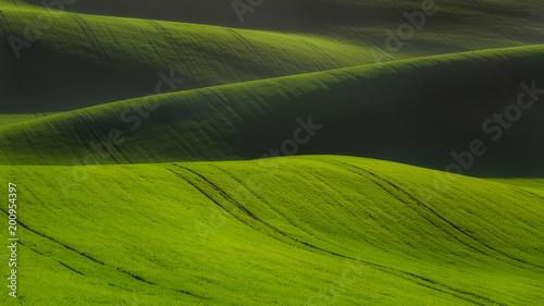 Foto Murales rolling hills in Moravia Czech republic spring time