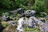 Mount Olympos Mountain Stream, Greece