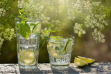 two glasses with a mojito drink in the open air, next to lie lime slices, against a background of greenery, sun rays - 200957959