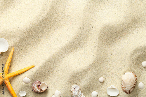 Sand Background with Starfish and Shells