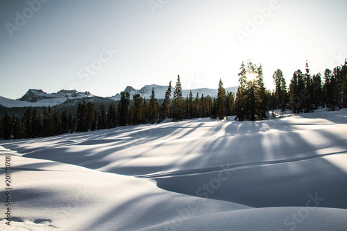 Plexiglas Grijs Ely on the background of an excellent mountain landscape.