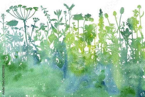 Akwareli tło z rysunkowymi ziele i kwiatami