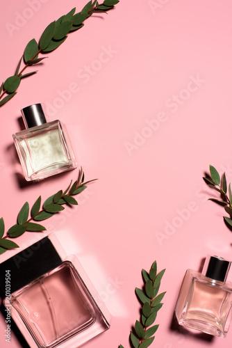 widok z góry butelek perfum z zielonymi gałązkami na różowej powierzchni