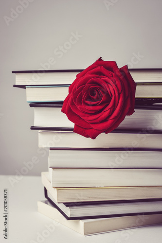 Foto Murales red rose and books