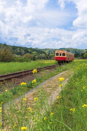 In de dag Spoorlijn 【千葉】小湊鉄道と菜の花畑