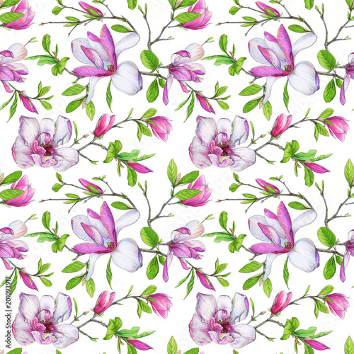 Fototapeta Seamless pattern, blooming magnolia and weave branches with green foliage. Illustration by markers, beautiful floral composition on a white background.