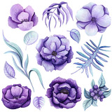 Botanical Set of Watercolor Purple Flowers - 201102969