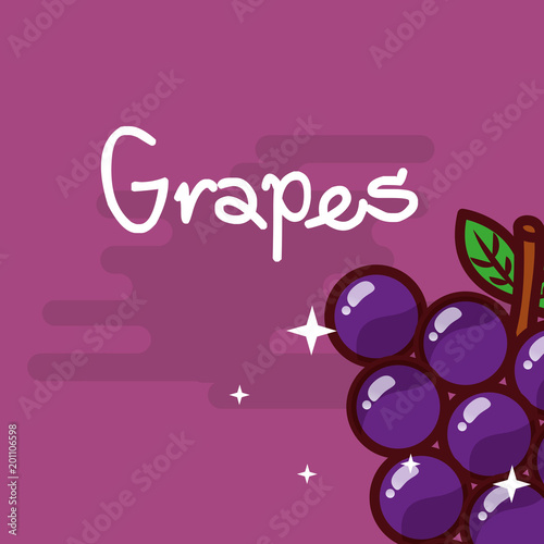 grapes fruit delicious shiny poster vector illustration