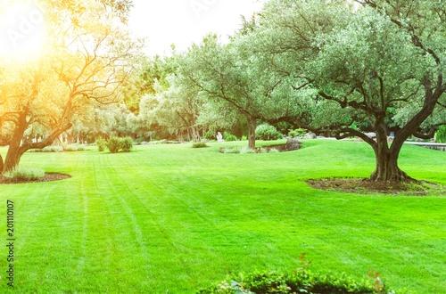 Landscape. - 201110107