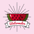 slice watermelon fruit organic vitamins emblem vector illustration