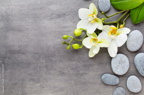 Foto Murales Beauty orchid on a gray background. Spa scene.